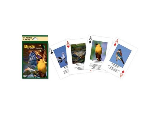 Puzzle Photographic Cards - Impact Photographics IMP144PLY Playing Cards Birds North American