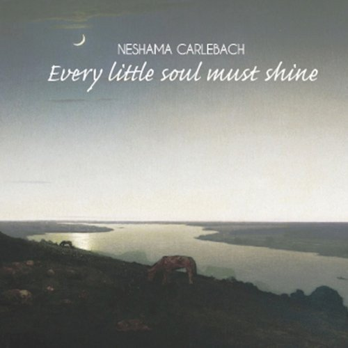 Every San Antonio Mall Little Soul Shine Special Campaign Must
