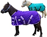 Derby Originals 1200D 300G Heavy Duty Mini Horse Winter Turnout Blanket
