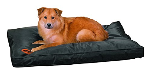 Slumber Pet Toughstructable Beds  -  Stain-, Odor-, and Water-Resistant Ultra-Durable Nylon Beds for Dogs - Large, (Kong Pet Bed)
