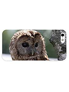 3d Full Wrap Case for iPhone 5/5s Animal Barred Owl57