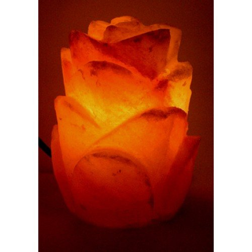 A-STAR(TM) Himalayan Natural Air Purifying Himalayan Salt Lamp, Bulb and Dimmer Control, Flower Style