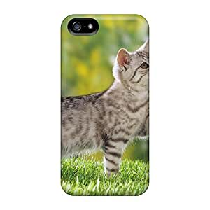 New Style William T Pascale Hard Case Cover For Iphone 5/5s- Passeio No Jardim