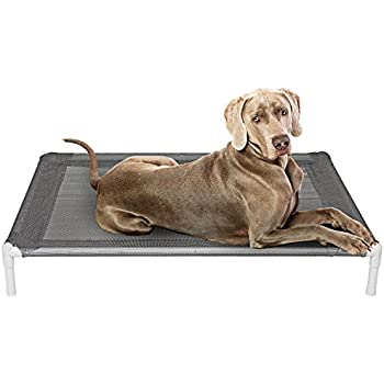 Amazon.com : Kuranda Walnut PVC Chewproof Dog Bed - Large