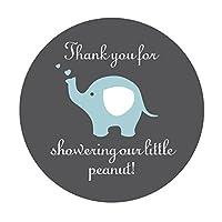 Blue Grey Elephant Thank You Stickers, Boy