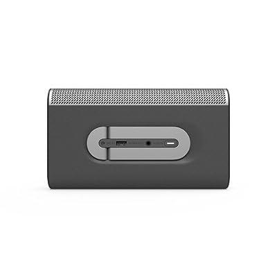 VIZIO SP30-E0 SmartCast Crave Go Multi-Room Wireless Speaker, Gray