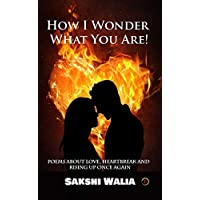 How I Wonder What You Are!