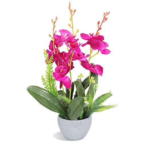 RERXN Artificial Orchid Bonsai Fake Orchid Arrangement 3 Heads PU Potted Phalaenopsis Plant for Home Party Decor (Fuchsia)
