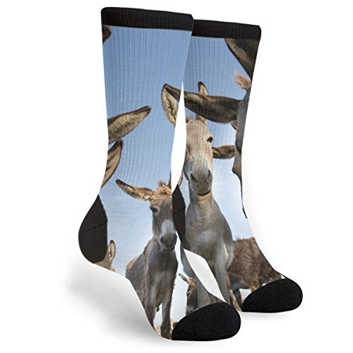 - Fashion Travel Breathable Socks Funny Image Of Group Of Curious Donkeys Men & Women Running Casual Socks