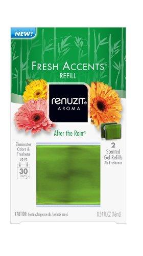 Air Fresh Freshner (Renuzit Fresh Accents Air Freshener Refill, After The Rain, .54 Ounce)