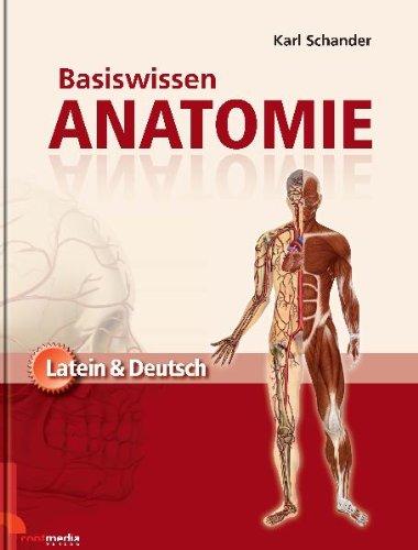 Basiswissen Anatomie: Latein & Deutsch: Amazon.de: Contmedia Verlag ...