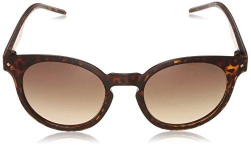2036 Brown Marron S Polar Havana Sonnenbrille Polaroid PLD 8Zxq6nA