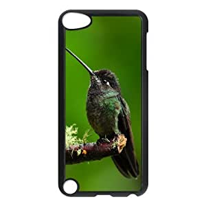 Ipod Touch 5 Birds Phone Back Case Art Print Design Hard Shell Protection TY074372