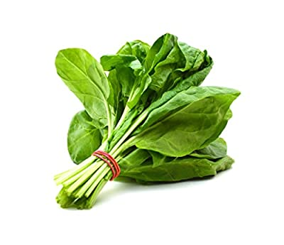 HOT sale! 400 Spinach Seeds Salad Leaves Good Taste Non-GMO DIY Home Garden Plant