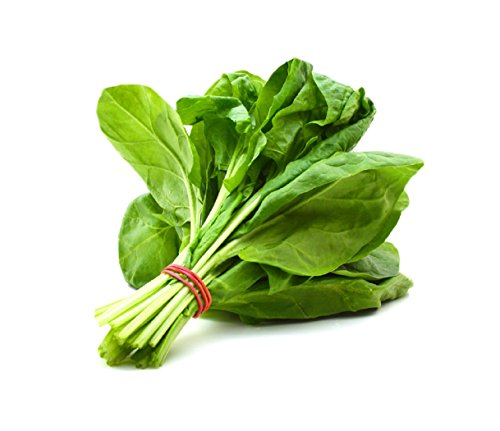 HOT sale! 2000 Spinach Seeds Salad Leaves Good Taste Non-GMO DIY Home Garden - Marjuana Leaf