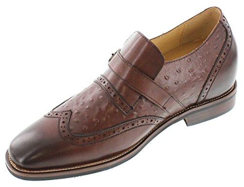 Toto–a60121–7,6cm Grande Taille–Hauteur Augmenter Chaussures ascenseur–en cuir marron pour homme