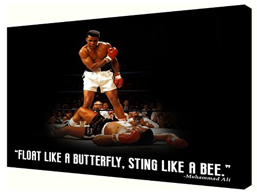 Frames by Mail Float Butterfly. Sting Like A BEE Muhammad Ali Canvas, 18