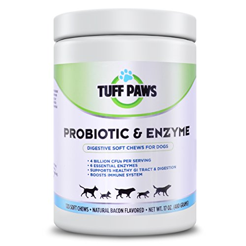 All Natural Probiotic & Enzyme Digestive for Dogs - Relief from Skin Itching, Allergies, Diarrhea, Gas, Bad Breath, Yeast - 120 Soft Chews