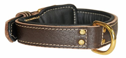 """Dean and Tyler """"ITALIAN TAILOR"""", Dog Collar with Black Padding and Brass Hardware – Brown – Size 30-Inch by 1-3/4-Inch – Fits Neck 28-Inch to 32-Inch"""