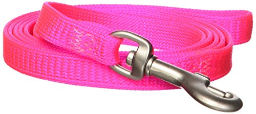 Hamilton 3/8-Inch by 4-Feet Snag Proof Braided Cat Lead with Brushed Hardware, Hot Pink (Cat Braided Hamilton Collar)