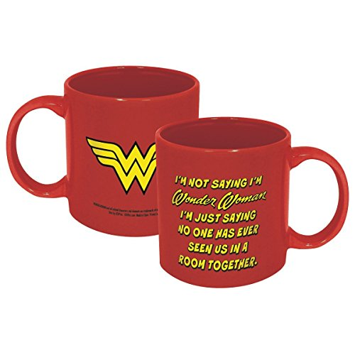 ICUP 7584 DC Wonder Woman Not Saying Mug, Multicolor by ICUP