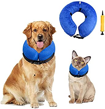 Amazon.com: ROZU Collar protector inflable para perros ...