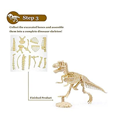 SSRSHDZW Dinosaur Skeleton Dig Kits Children Dig Out Dinosaur Skeleton Fossil, Prehistoric World Discover Toy Model Simulation Dinosaurs Collection Kid Toys: Sports & Outdoors