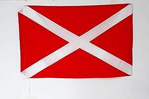 AZ FLAG Bandera DE Carrera ROJA con Cruz Blanca 90x60cm para Palo - Bandera Carreras DE AUTOMOVILISMO 60 x 90 cm: Amazon.es: Jardín