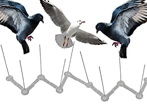 7.5CM HIGH ANTI PERCH BIRD PIGEON SEAGULL INTRUDER DEFENDER / DETERRENT FENCE WALL SPIKES - AVAILABLE IN 2, 4, 6, 8, 10 METERS (6 METER)