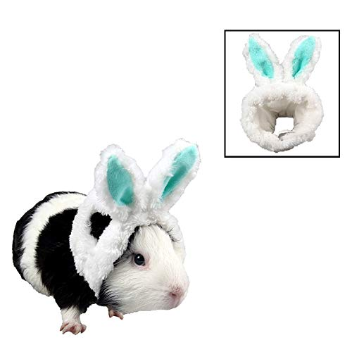 Stock Show Small Animal Cute Bunny Ear Costume