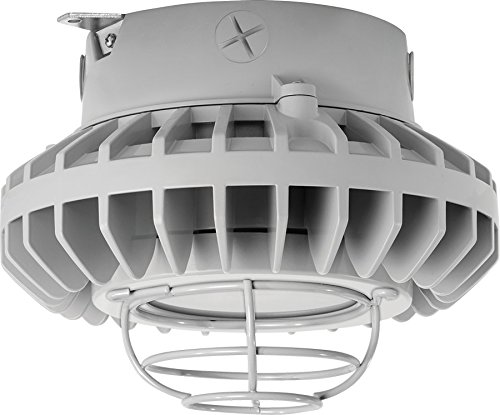 RAB Lighting HAZXLED26FF-G HAZLED 26W Cool LED Ceiling with Frosted Flat Lens and Wire Guard, 5100 K, Gray by RAB Lighting