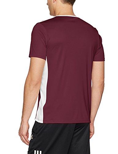 Maroon Uomo white T 18 Entrada shirt Adidas n8xR4HqX6