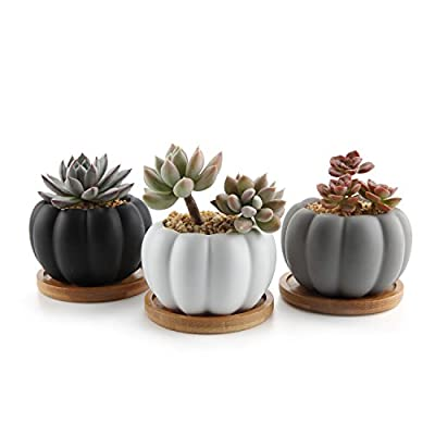 T4U 3.3 Inch Ceramic Modern Pumpkin Design Succulent Plant Pot/Cactus Plant Pot Container with Bamboo Tray - Full Color Set of 3