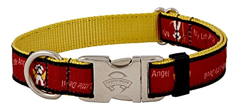 Country Brook Design Premium My Little Devil/Angel Ribbon Dog Collar - Small