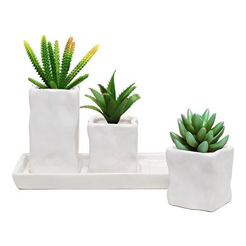 Modern Design Ceramic Succulent Planter