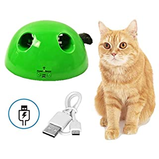 【Upgraded 2.0 USB Charge Version】QUECY Interactive Cat Toys, Pop Rechargeable Smart Pet Toy Fun Gift, Mouse Squeak Sound, Automatic Rotating Feather, Auto Shut Off Kittens Kitty Play Exercise - Green