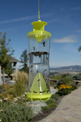 042853801007 - RESCUE! WHYTR Non-Toxic Reusable Trap for Wasps, Hornets and Yellow Jackets carousel main 1