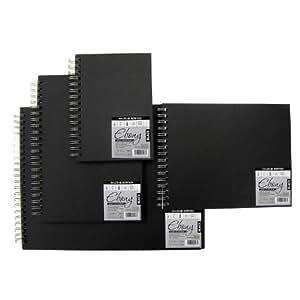 Daler Rowney - Cuaderno de pintura apaisado (acuarela, lápiz, tinta, gouache, ceras, 50 hojas, 26,5 x 21 cm, tapa dura, muelle de espiral)