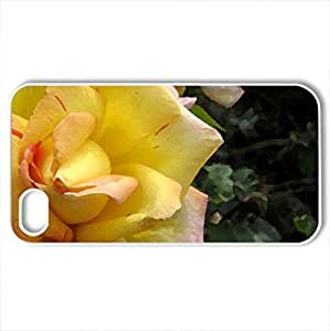 [LzdsNpo8017TfSZM]Phone For Iphone 6Plus 5.5Inch Case Cover Floating Roses PC