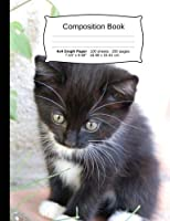 """Cat Composition Notebook, 4x4 Graph Paper: 4x4 Quad Rule Composition Book, Student Exercise Science Math Grid, 200 pages, 7.44"""" x 9.69"""" (Cat Series)"""