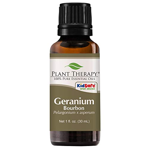 Plant Therapy Geranium Bourbon Essential Oil | 100% Pure, Undiluted, Natural Aromatherapy, Therapeutic Grade | 30 milliliter (1 ounce)