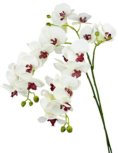 Rinlong 2pcs Real Touch Silk Orchids 35