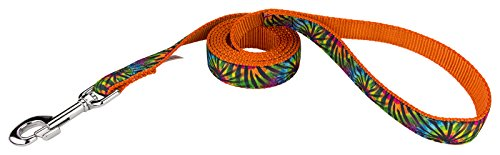 Country Brook Design | 1 Inch Tie Dye Stripes Ribbon Dog Leash - 6 Foot