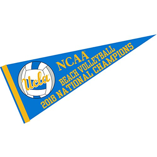 (College Flags and Banners Co. UCLA Bruins Womens Beach Volleyball 2018 Champions Pennant)