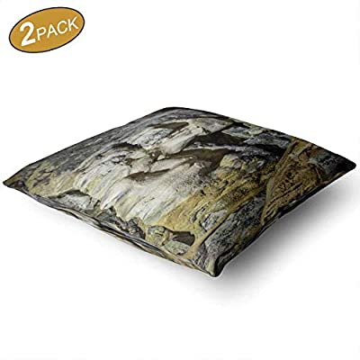 """Nine City Interface and Media Vector Symbols and Icons Throw Pillow Cushion Cover,069108 Decorative Square Accent Pillow Case,16"""" X 16"""",2Pcs"""