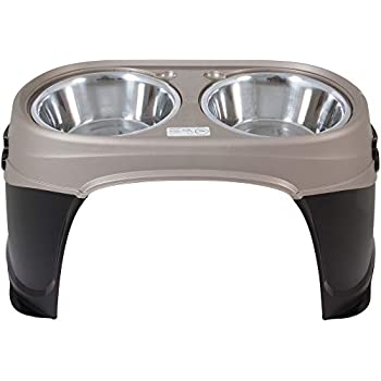 Petmate Easy Reach Pet Diner Elevated Dog Bowls 2 Sizes 2 Polished Colors