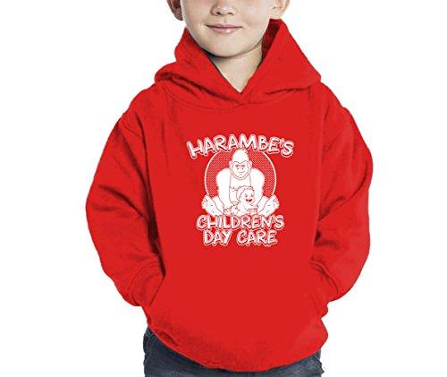Toddler Little Boy Harambe's Children Daycare Hoodie Sweatshirt (5/6, -