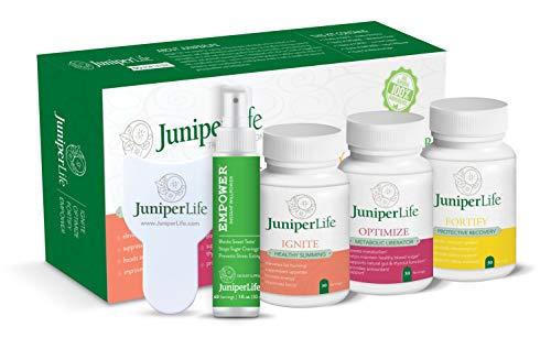 Transformation Program: 4 Product Healthy Weight Management Support, Gut Health, Immune Support, Cholesterol, & Sugar…
