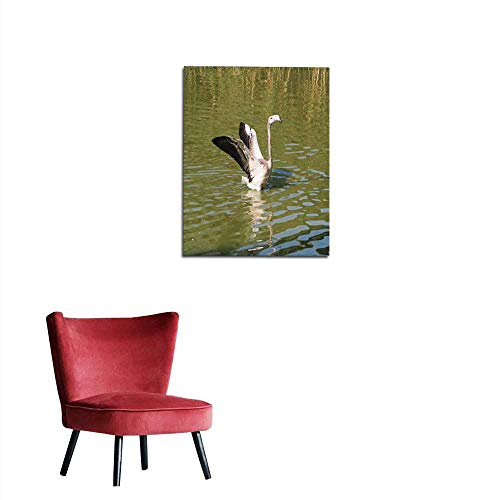 longbuyer Art Decor Decals Stickers American Flamingo (scienntific Name Phoenicopterus Ruber) Also Known as Caribbean Flamingo or Greater Flamingo Mural 16