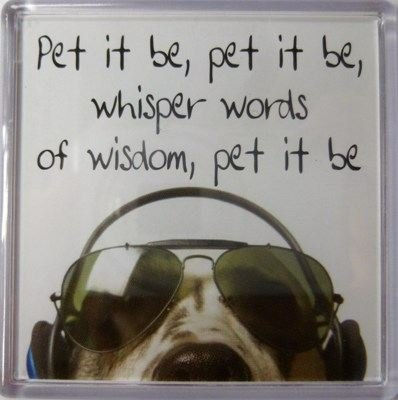 Buy fridge magnet wisdom